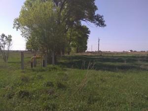 Земельный участок B-100346, Рожевка - Фото 2