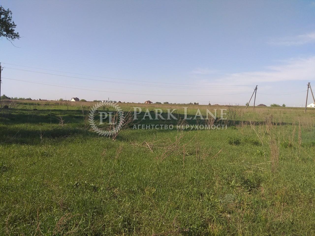 Земельна ділянка Рожівка, B-100351 - Фото 3