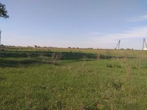 Земельный участок B-100351, Рожевка - Фото 3