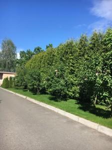 Дом B-100365, Луговая, Плюты (Конча-Заспа) - Фото 31