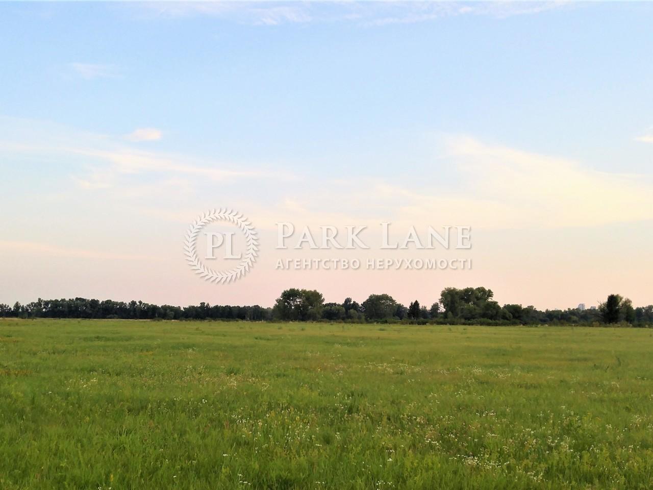 Земельный участок Погребы (Броварской), R-33500 - Фото 3