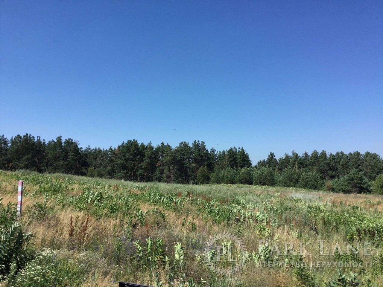Земельный участок Гореничи, R-33731 - Фото 4