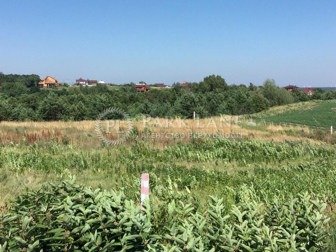 Земельный участок Гореничи, R-33731 - Фото 3