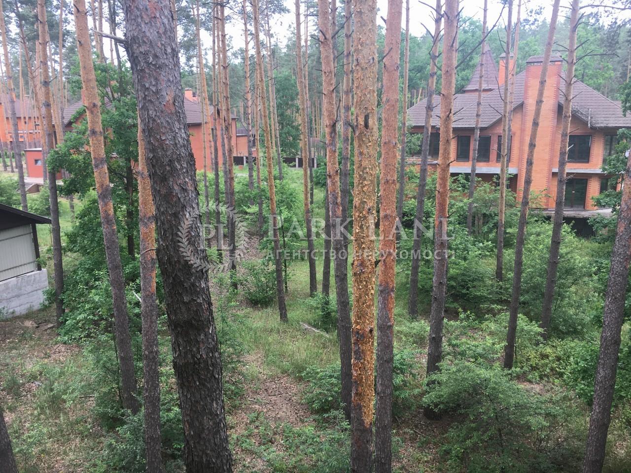 Дом B-100517, Лесная, Мощун (Киево-Святошинский) - Фото 13