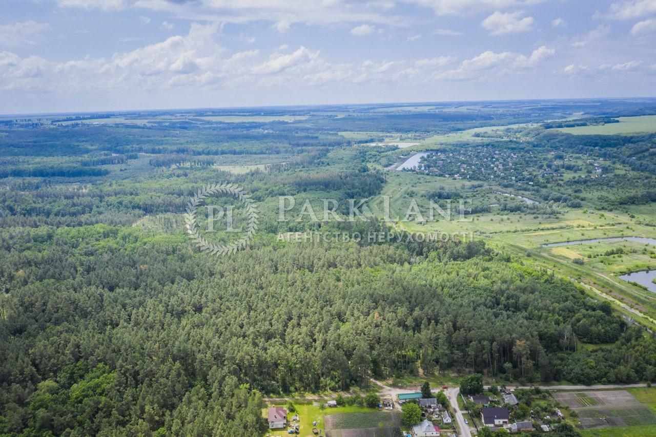 Земельный участок Тарасовка (Обуховский), B-100157 - Фото 3