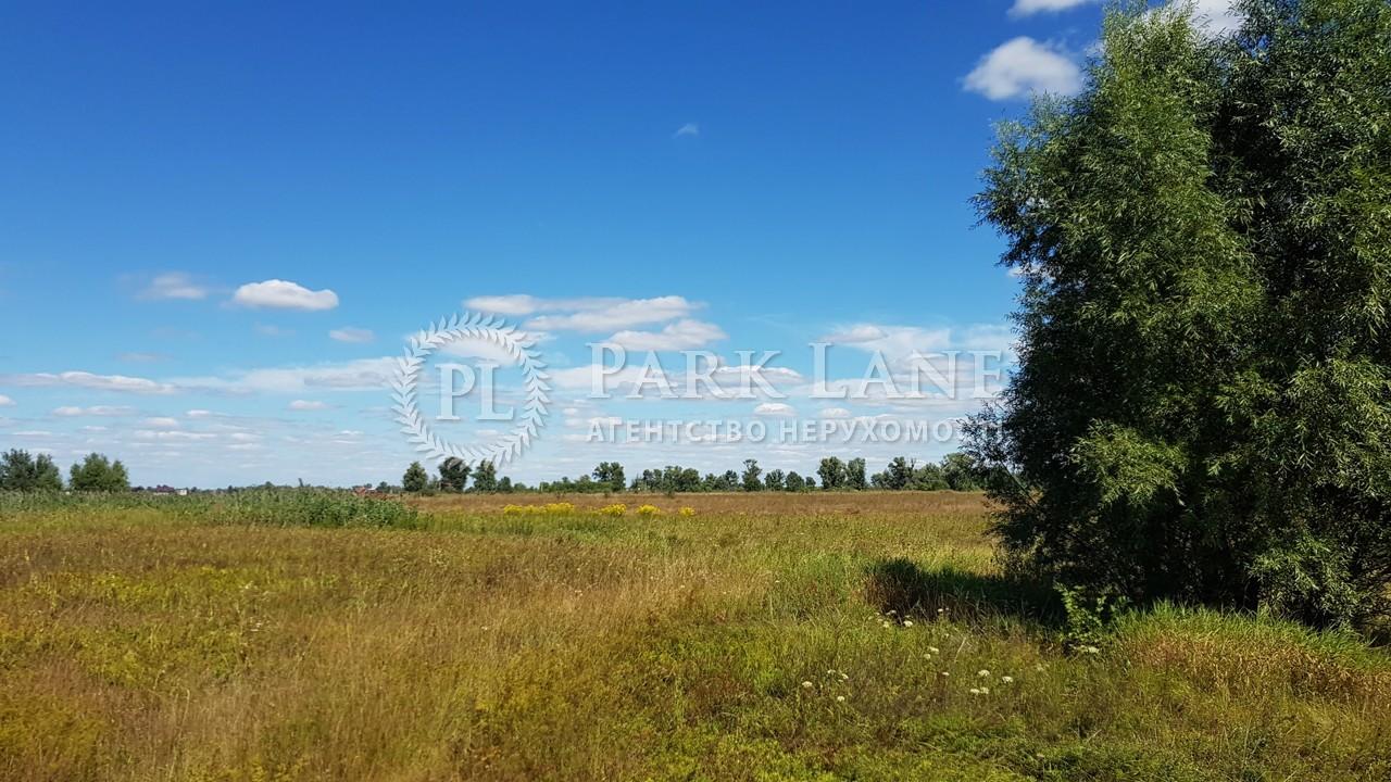 Земельный участок Зазимье, N-22226 - Фото 2