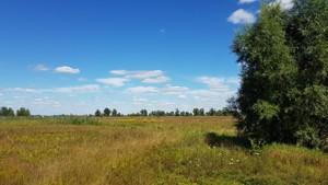 Земельный участок N-22226, Зазимье - Фото 2