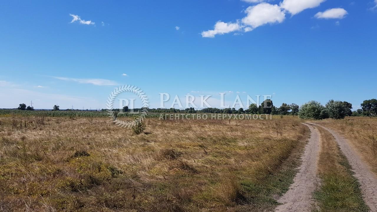 Земельный участок Зазимье, N-22226 - Фото 4