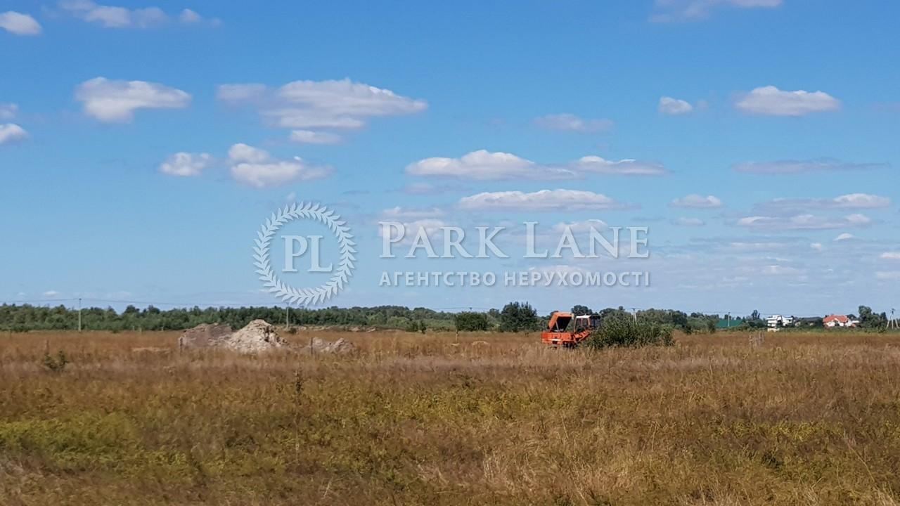Земельный участок Зазимье, N-22226 - Фото 5
