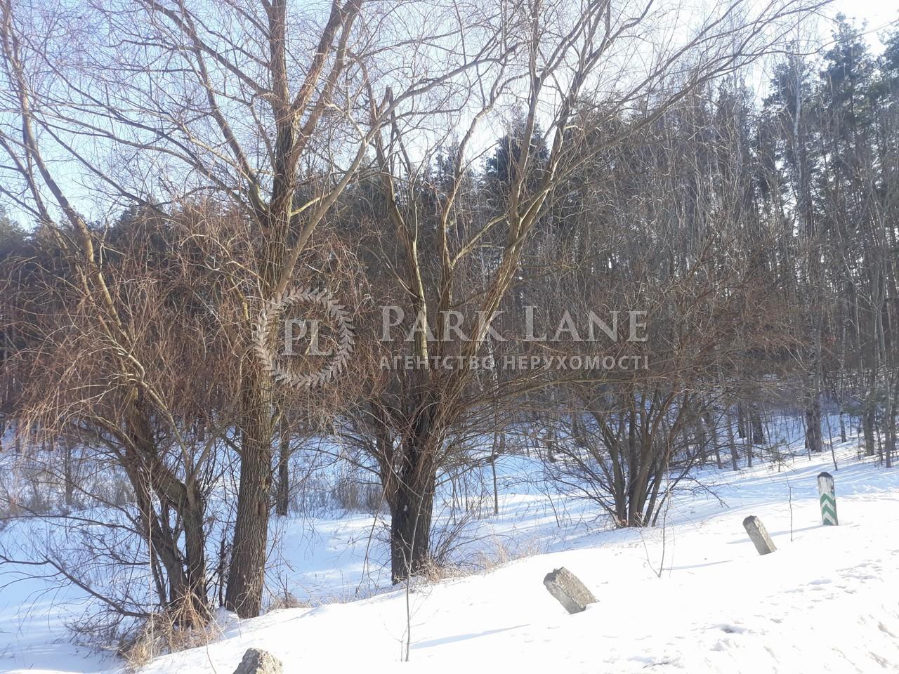 Земельный участок Васильков, L-28322 - Фото 1