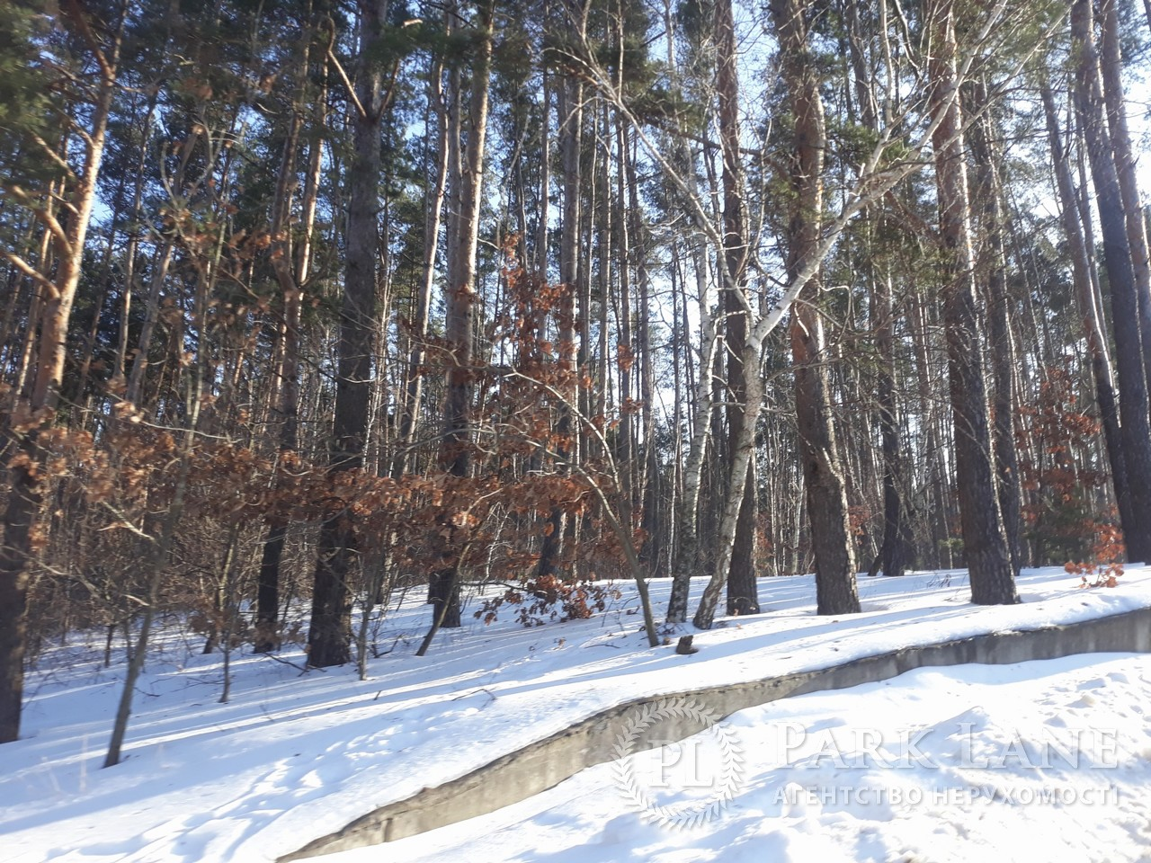 Земельный участок Васильков, L-28322 - Фото 3