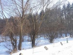 Земельный участок L-28323, Васильков - Фото 1