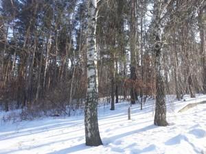 Земельный участок L-28323, Васильков - Фото 2