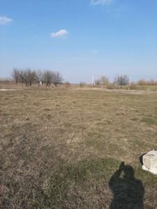 Земельный участок N-22883, Артемовка - Фото 7