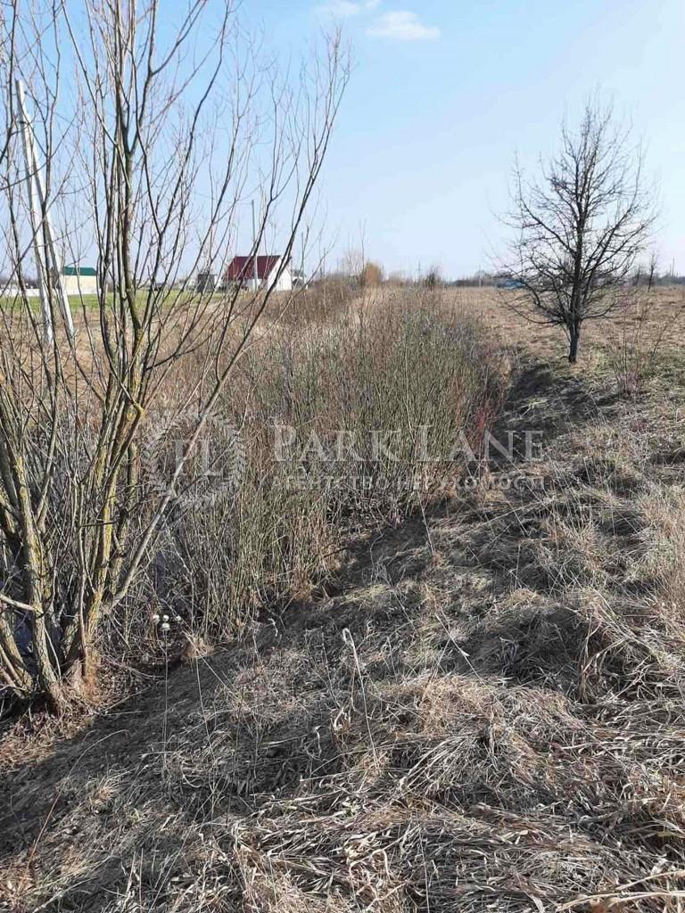 Земельный участок Артемовка, N-22883 - Фото 12