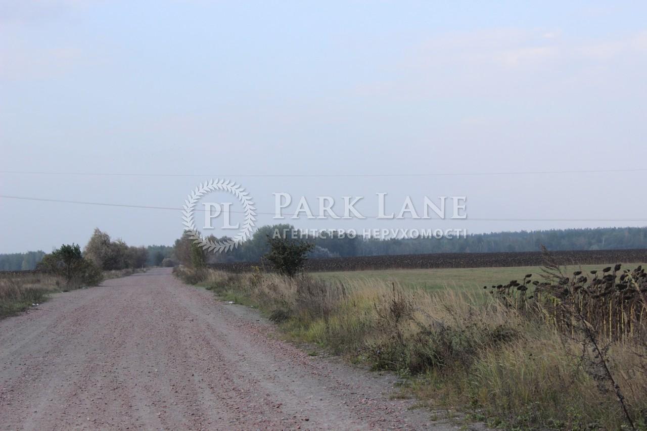 Земельный участок Березовка, M-9910 - Фото 3