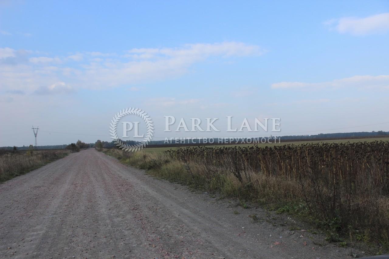 Земельный участок Березовка, R-38493 - Фото 1
