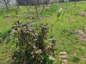 Земельный участок N-22920, Крюковщина - Фото 6
