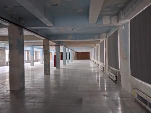 Нежитлове приміщення, B-102448, Науки просп., Київ - Фото 14
