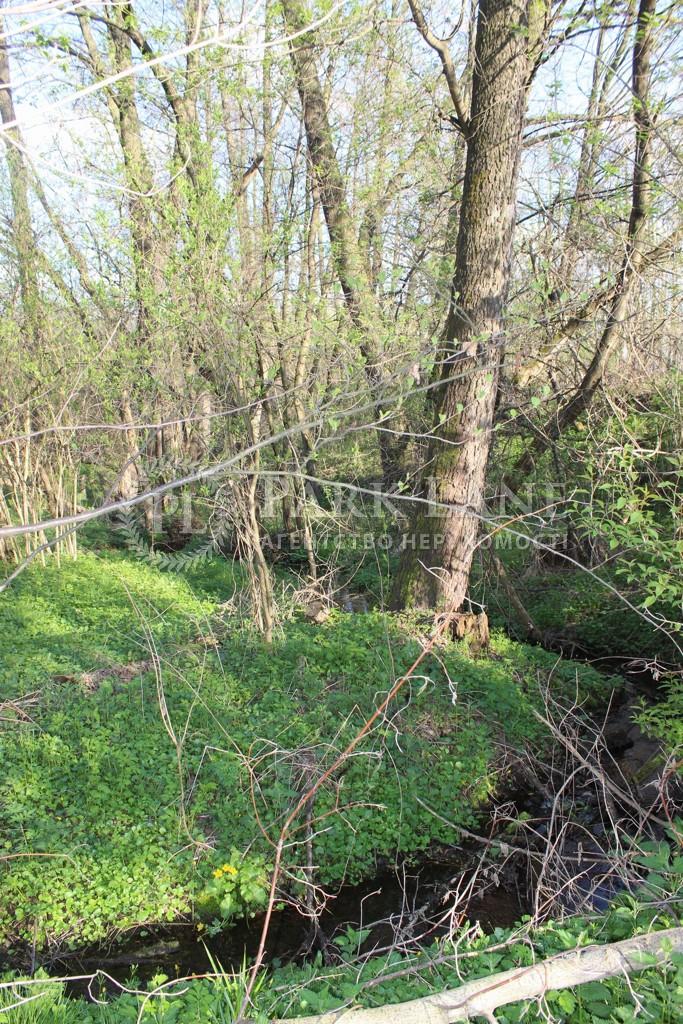 Земельный участок Старые Безрадичи, R-38731 - Фото 3