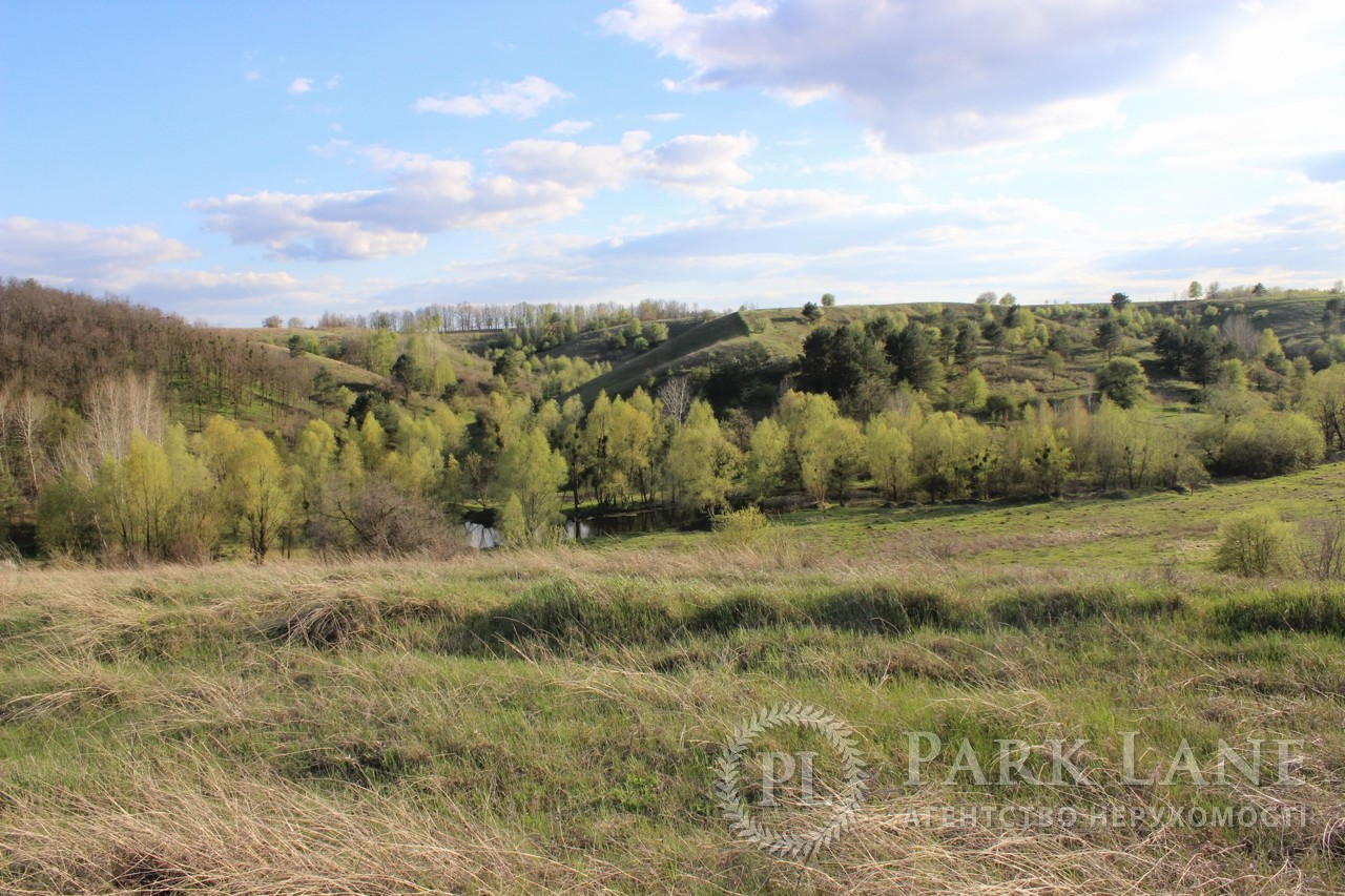 Земельный участок Старые Безрадичи, R-38731 - Фото 1