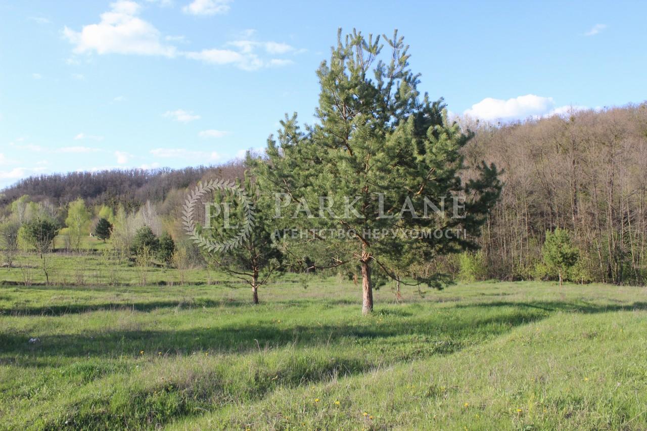 Земельный участок Старые Безрадичи, R-38731 - Фото 2