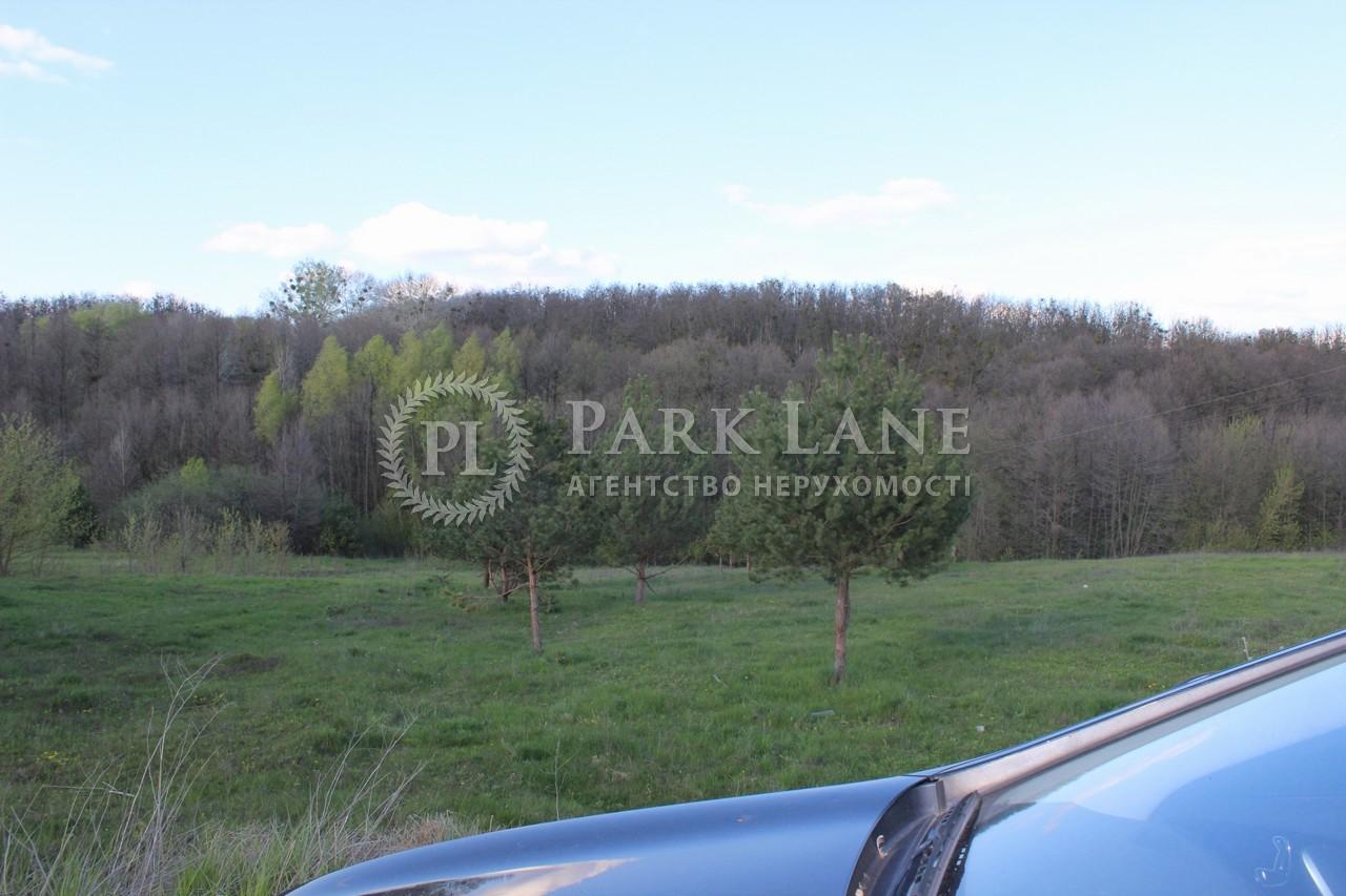 Земельный участок Старые Безрадичи, R-38731 - Фото 5