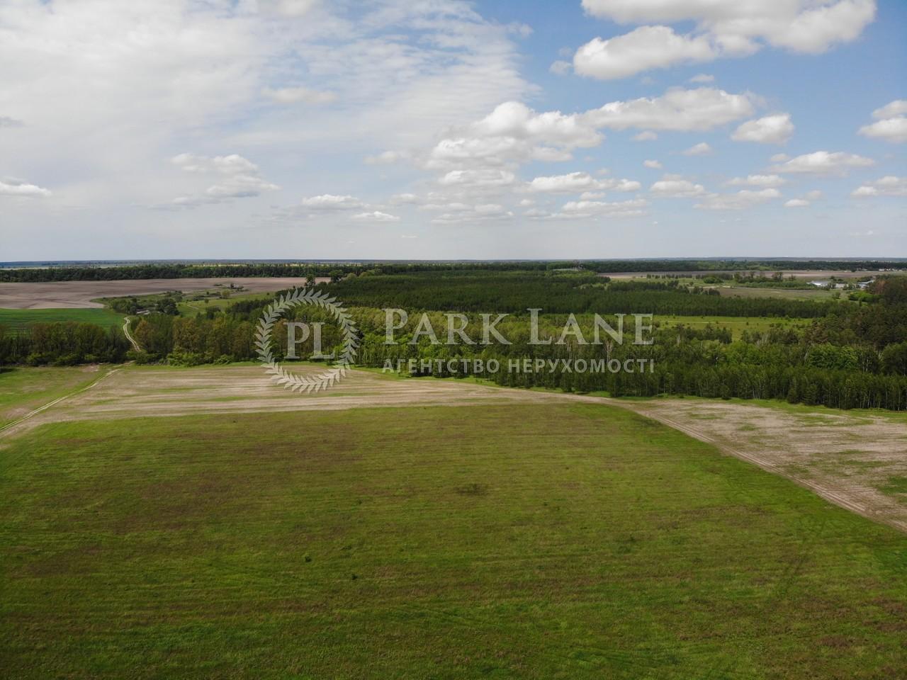 Земельный участок R-39229, Хлепча - Фото 2