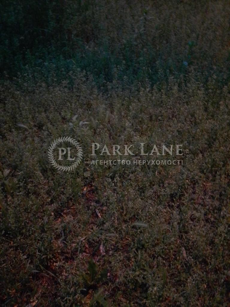 Земельный участок Плюты (Конча-Заспа), I-33048 - Фото 4
