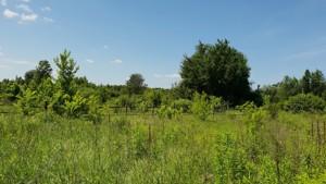Земельный участок R-39686, Соловьяненко, Козин (Конча-Заспа) - Фото 1