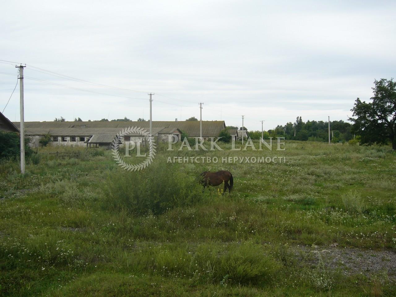 Земельный участок Осыково, R-39679 - Фото 3