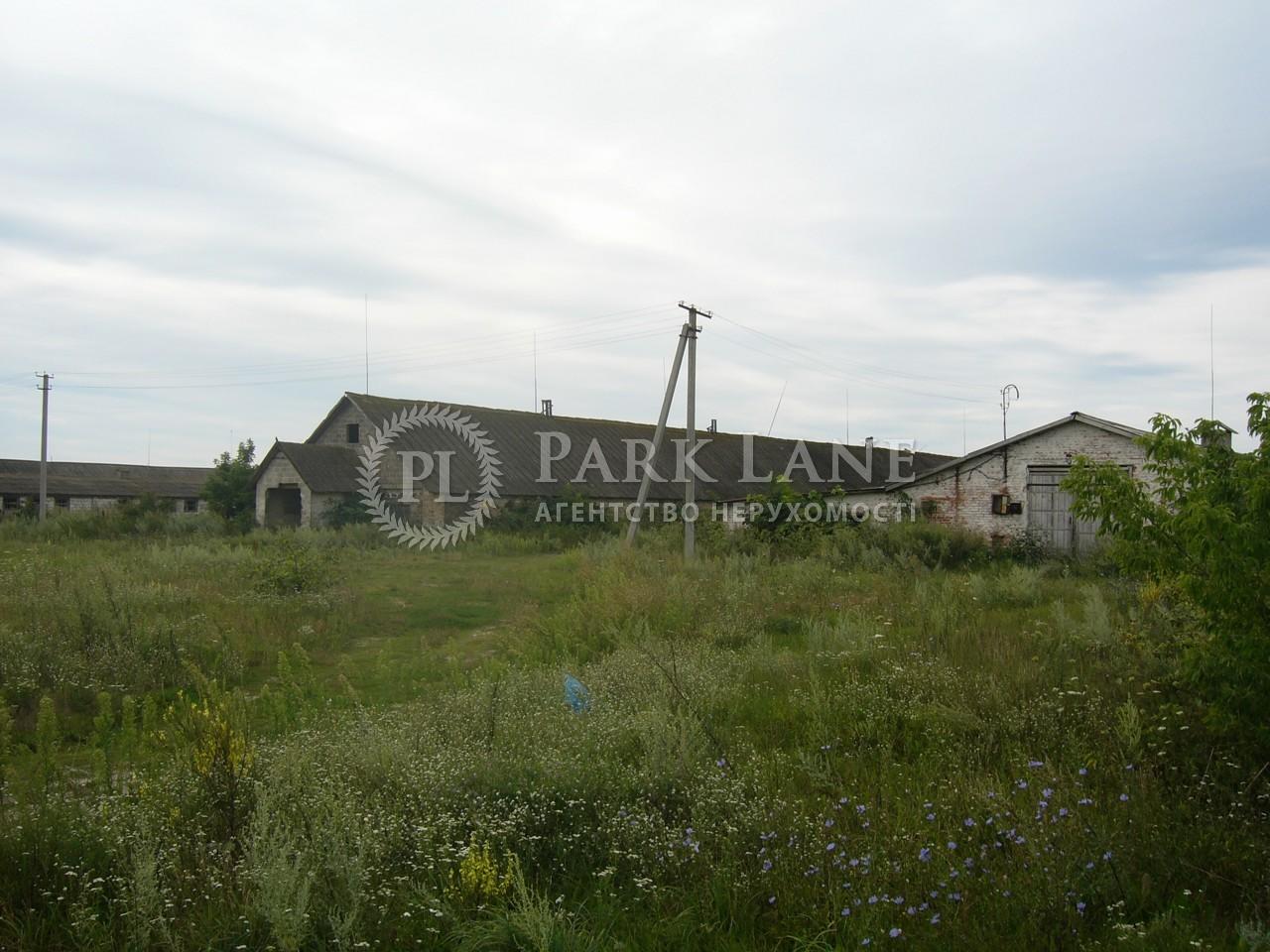 Земельный участок Осыково, R-39679 - Фото 5