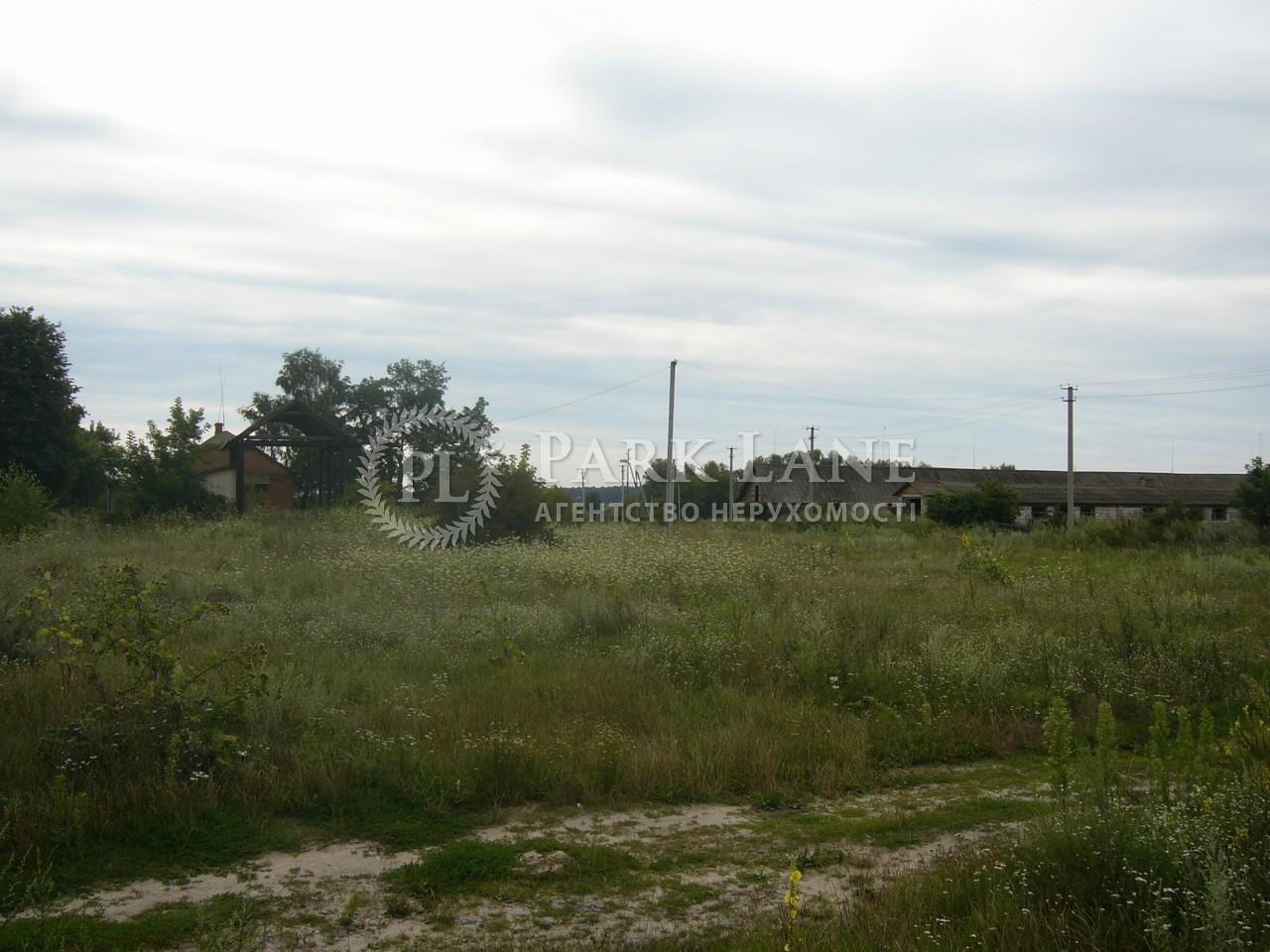 Земельный участок Осыково, R-39679 - Фото 6