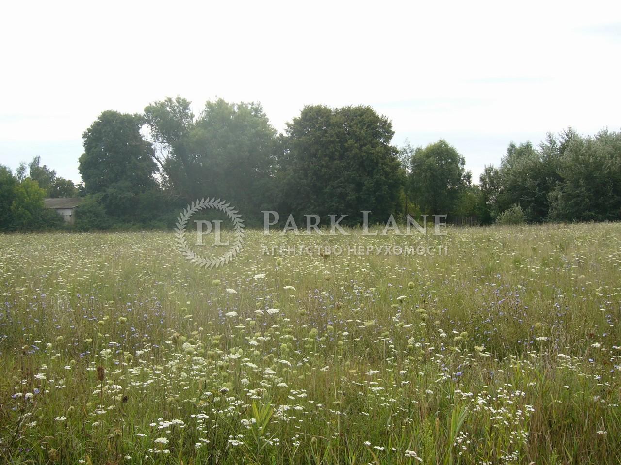 Земельный участок Осыково, R-39679 - Фото 9