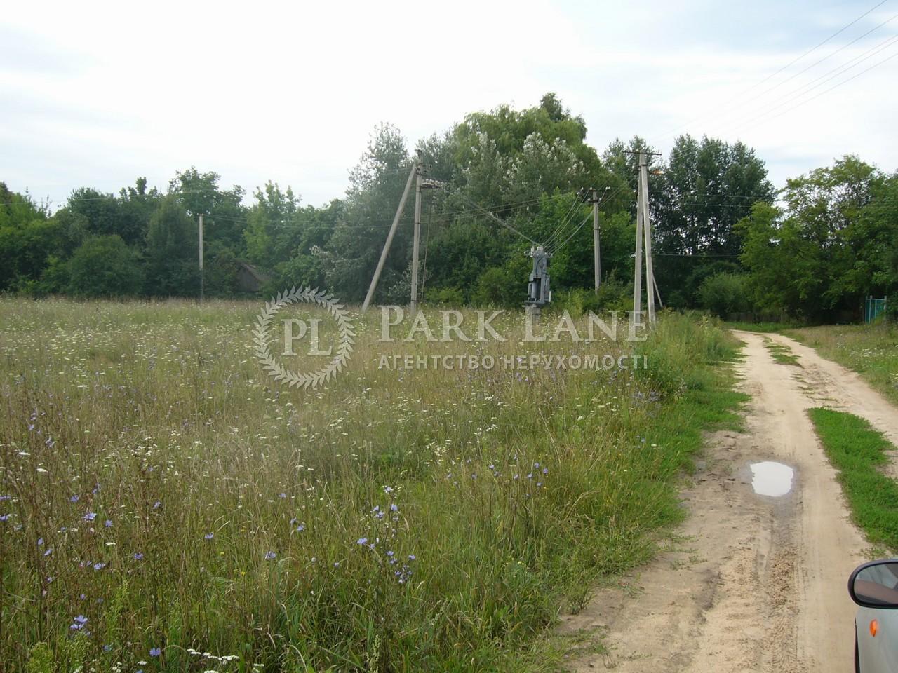 Земельный участок Осыково, R-39679 - Фото 10