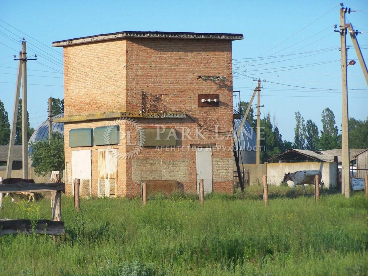Нежилое помещение, B-102779, Козлов - Фото 1