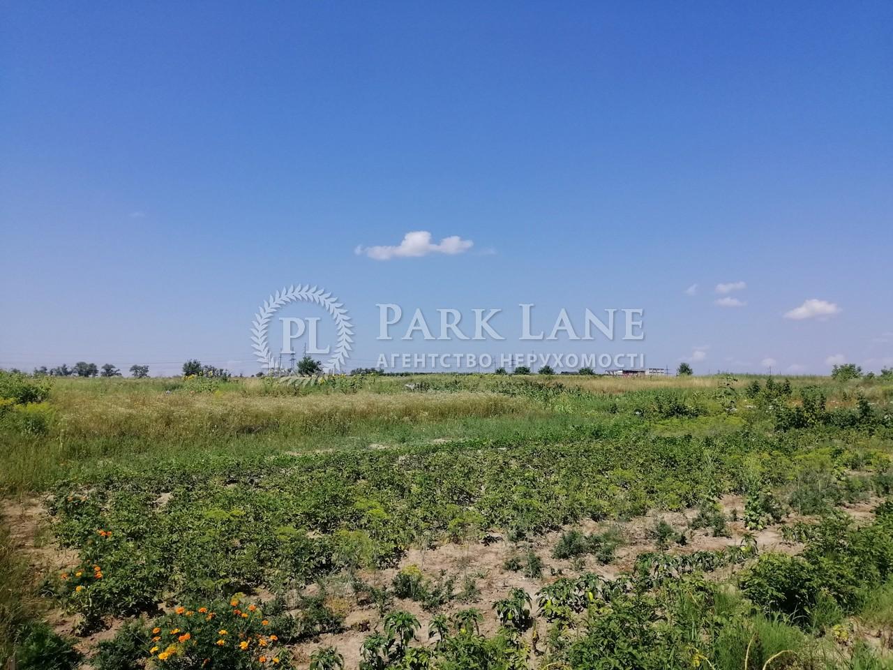 Земельный участок Боярка, R-39991 - Фото 5