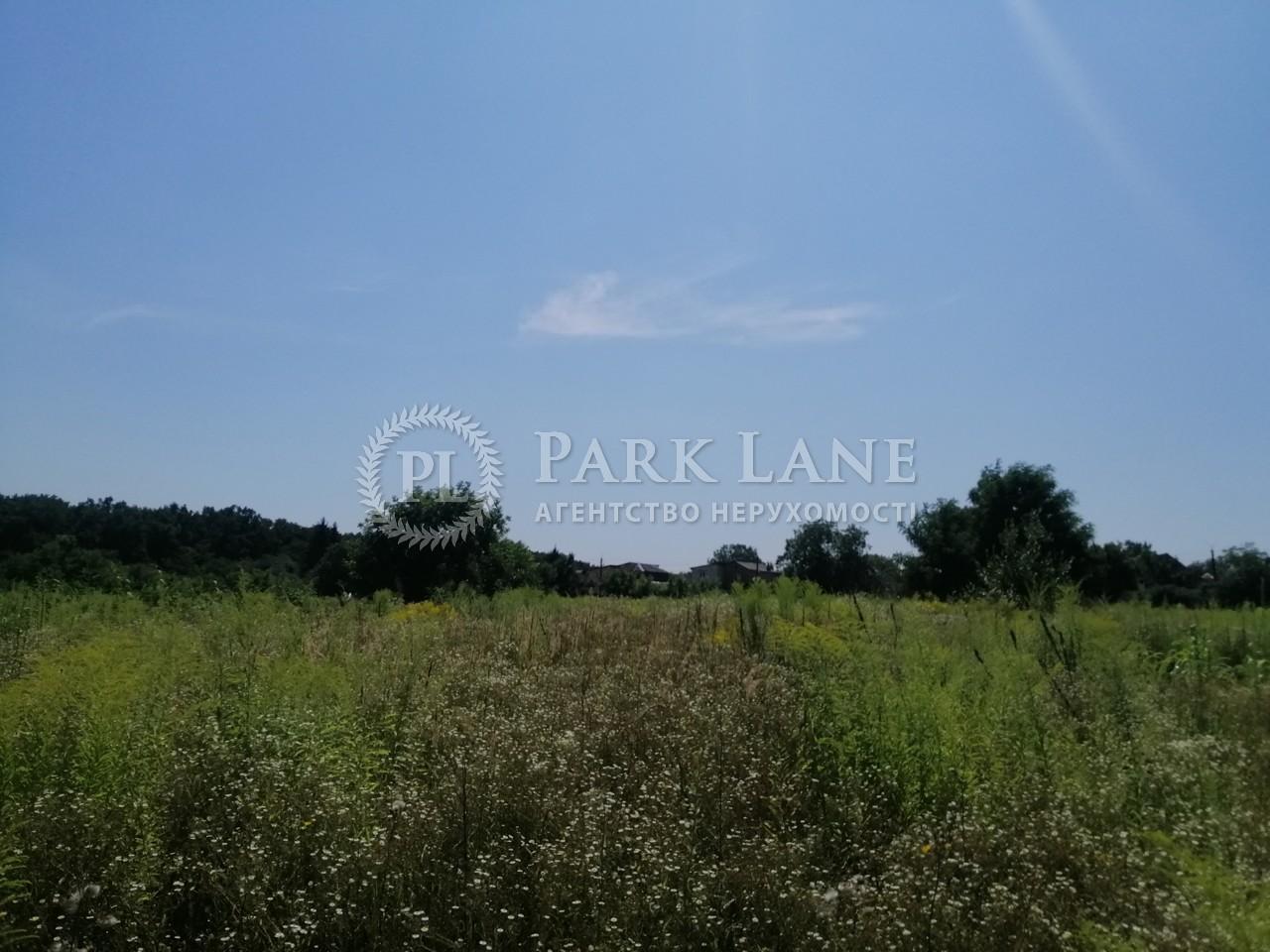 Земельный участок Боярка, R-39991 - Фото 8