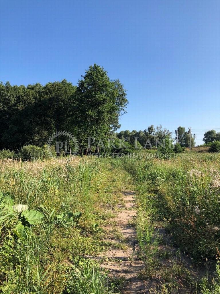 Земельный участок Козин (Конча-Заспа), L-28730 - Фото 6