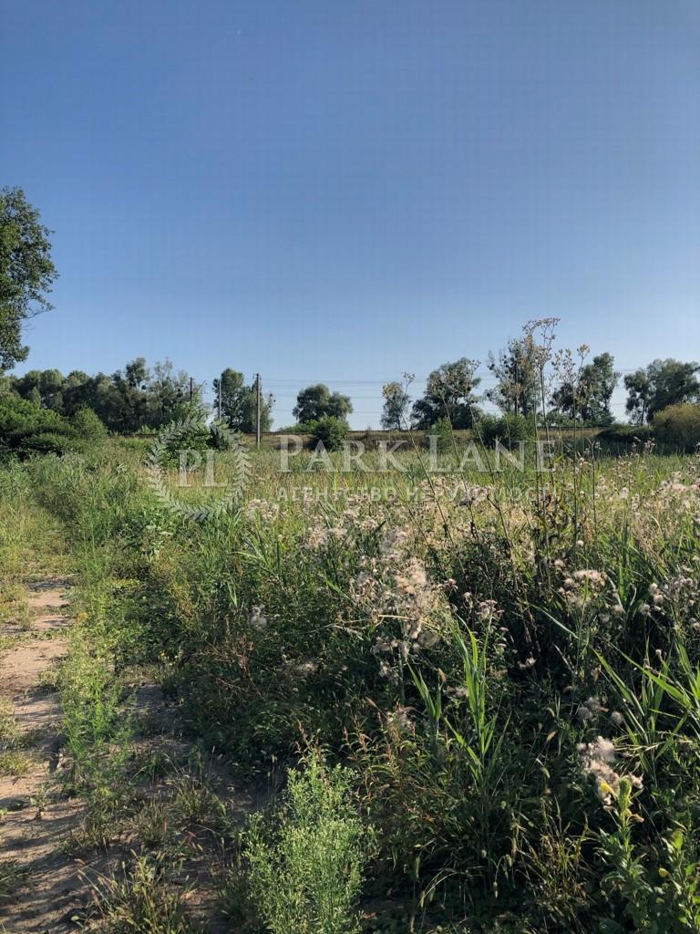 Земельный участок Козин (Конча-Заспа), L-28730 - Фото 9