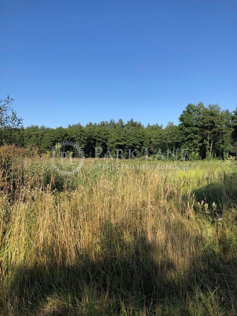 Земельный участок Козин (Конча-Заспа), L-28730 - Фото 3