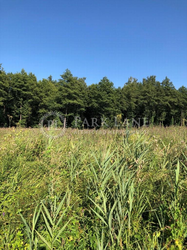 Земельный участок Козин (Конча-Заспа), L-28730 - Фото 2