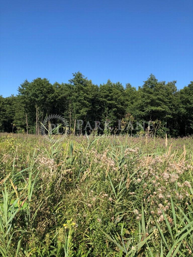 Земельный участок Козин (Конча-Заспа), L-28730 - Фото 11