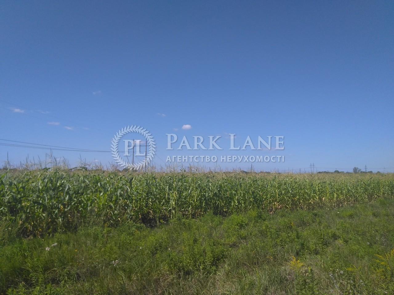 Земельный участок Бровары, I-32114 - Фото 3