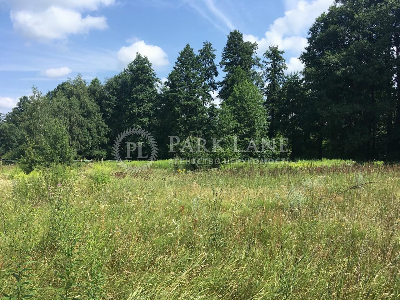 Земельный участок Ревное, K-31895 - Фото 5