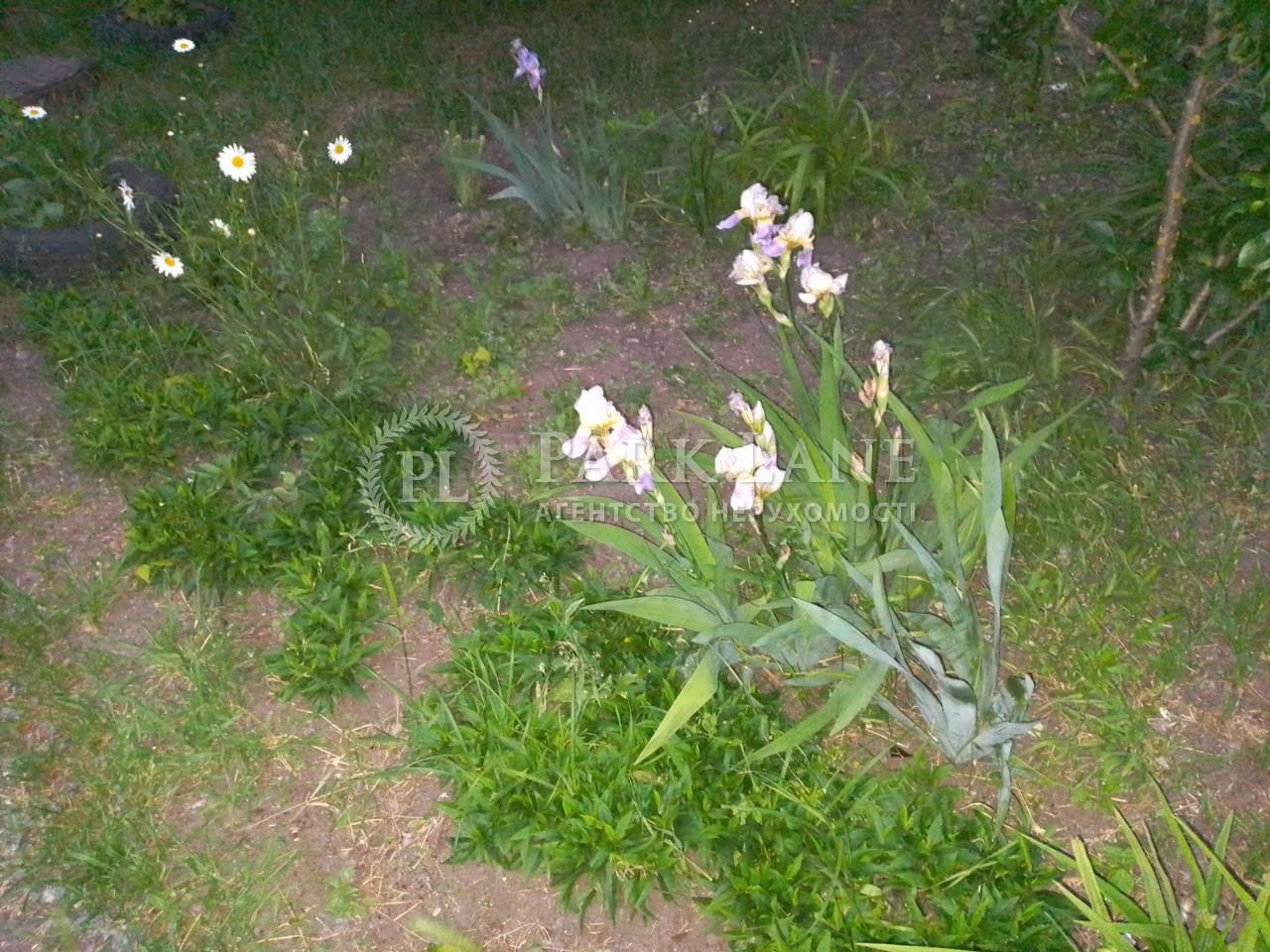 Земельный участок Триполье, I-33060 - Фото 2