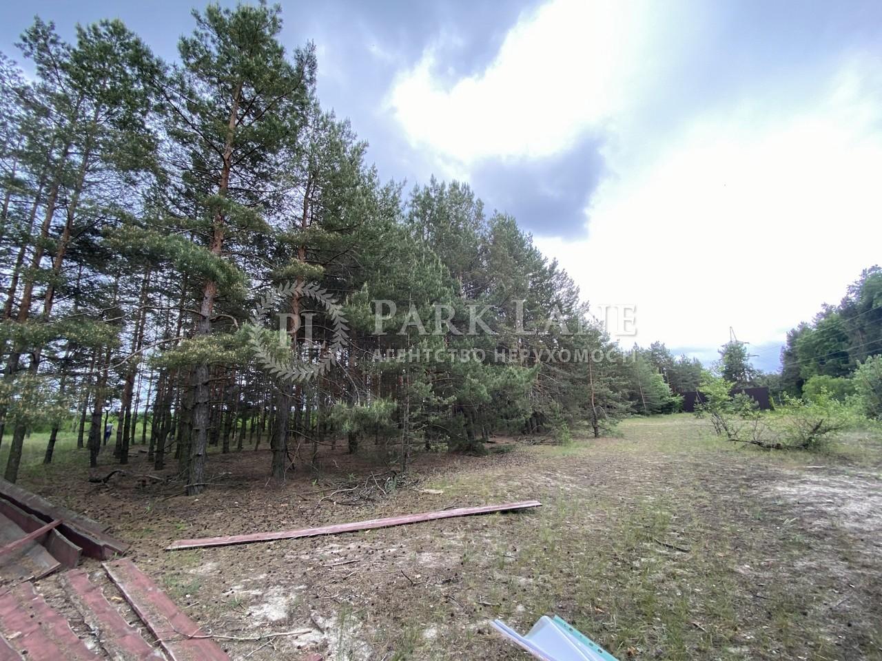 Земельный участок Плюты (Конча-Заспа), I-33560 - Фото 4