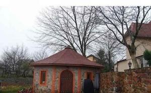 Дом B-84726, Садовая (Осокорки), Киев - Фото 6