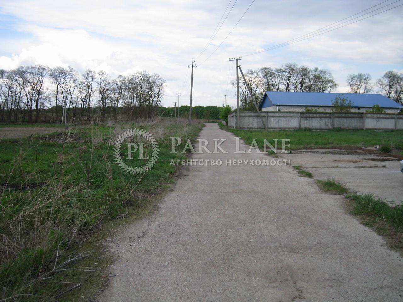 Земельна ділянка Проців, N-15322 - Фото 1