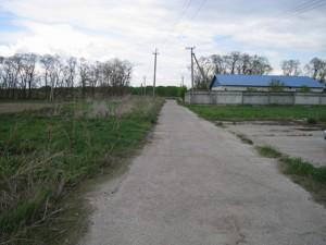 Земельный участок N-15322, Процев - Фото 1